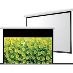 Projection Screen 250 x 250.jpg